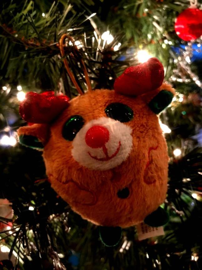 christmas bear_6495