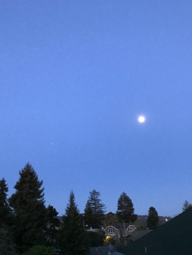 full moon-m